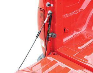 Picture of EZ Down Tailgate Assist Dee Zee DZ43200